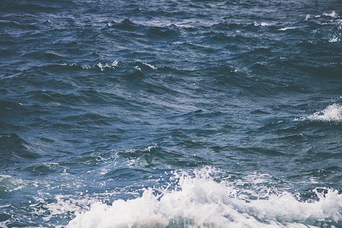 h2o-motion-nature-881462.jpg
